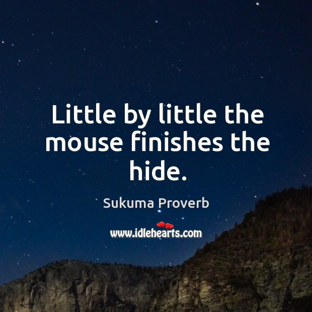 Little by little the mouse finishes the hide. Sukuma Proverbs Image