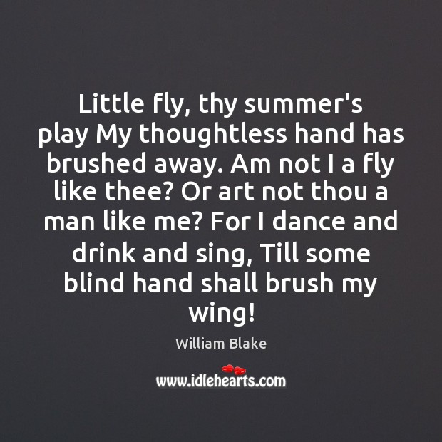 Little fly, thy summer's play My thoughtless hand has brushed away. Am William Blake Picture Quote