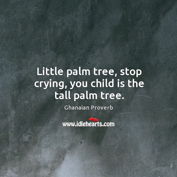 Little palm tree, stop crying, you child is the tall palm tree. Ghanaian Proverbs Image