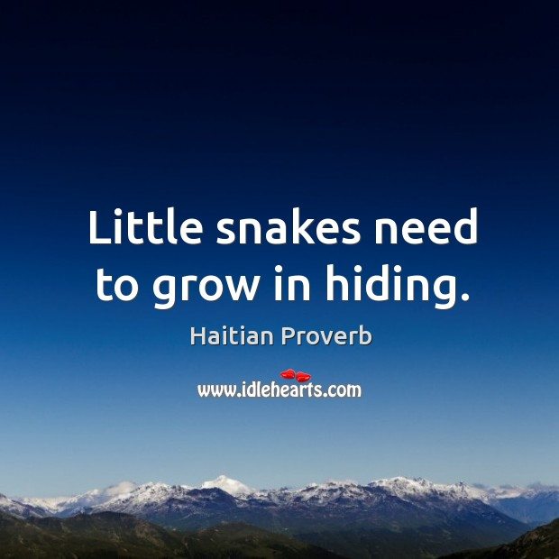 Little snakes need to grow in hiding. Haitian Proverbs Image