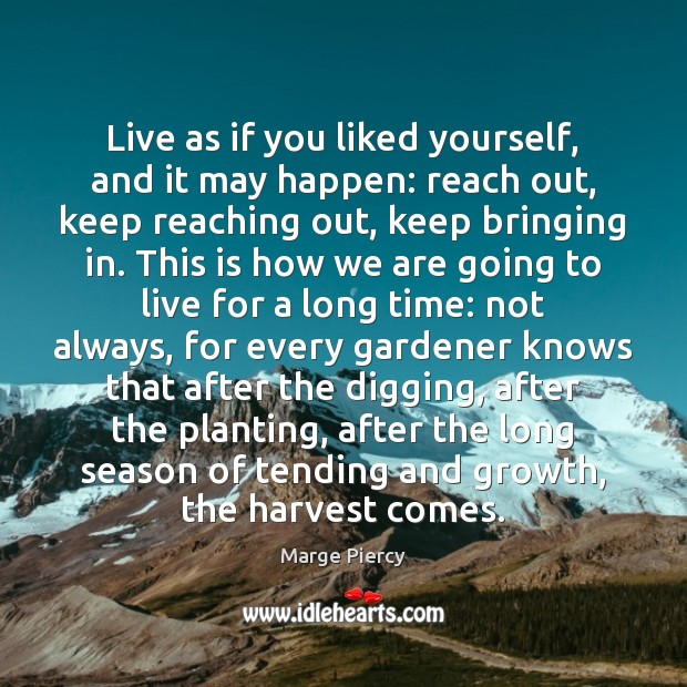 Live as if you liked yourself, and it may happen: reach out, Marge Piercy Picture Quote