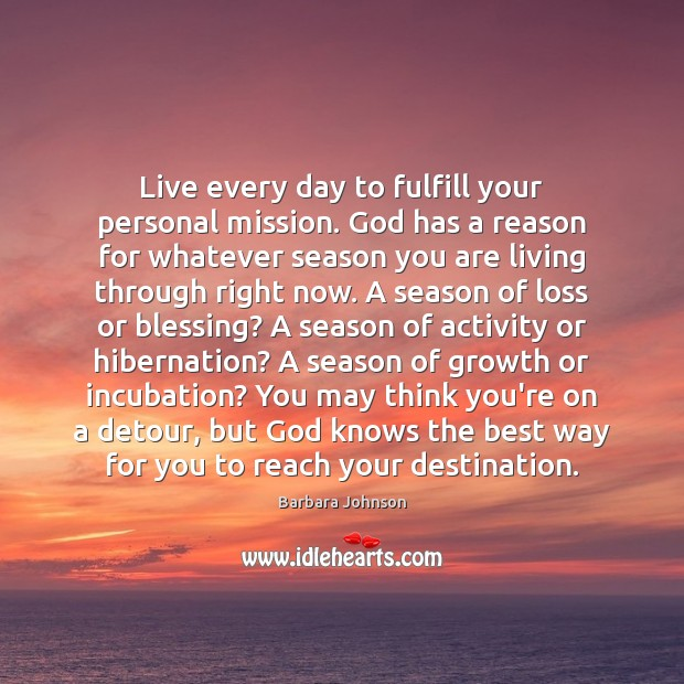 Live every day to fulfill your personal mission. God has a reason Barbara Johnson Picture Quote