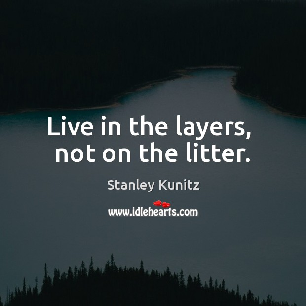 Stanley Kunitz Picture Quote image saying: Live in the layers,  not on the litter.