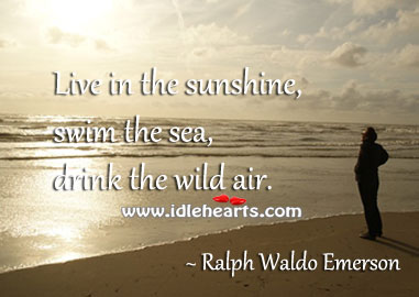 Live in the sunshine, swim the sea, drink the wild air. Image