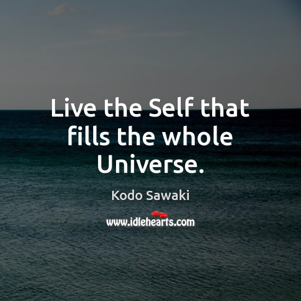 Live the Self that fills the whole Universe. Image