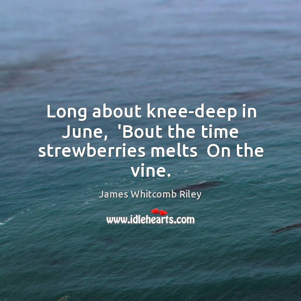 Long about knee-deep in June,  'Bout the time strewberries melts  On the vine. Image