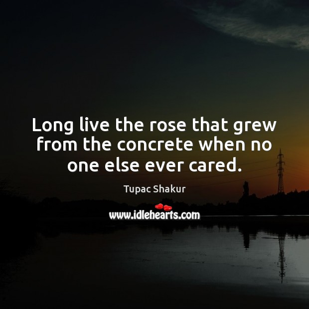 Long live the rose that grew from the concrete when no one else ever cared. Tupac Shakur Picture Quote
