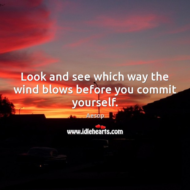 Image, Look and see which way the wind blows before you commit yourself.