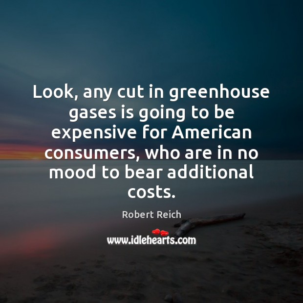 Image, Look, any cut in greenhouse gases is going to be expensive for