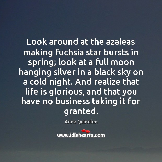 Image, Look around at the azaleas making fuchsia star bursts in spring; look