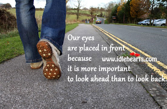 Image, Eyes are in front to look ahead, not backwards