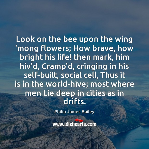 Look on the bee upon the wing 'mong flowers; How brave, how Image
