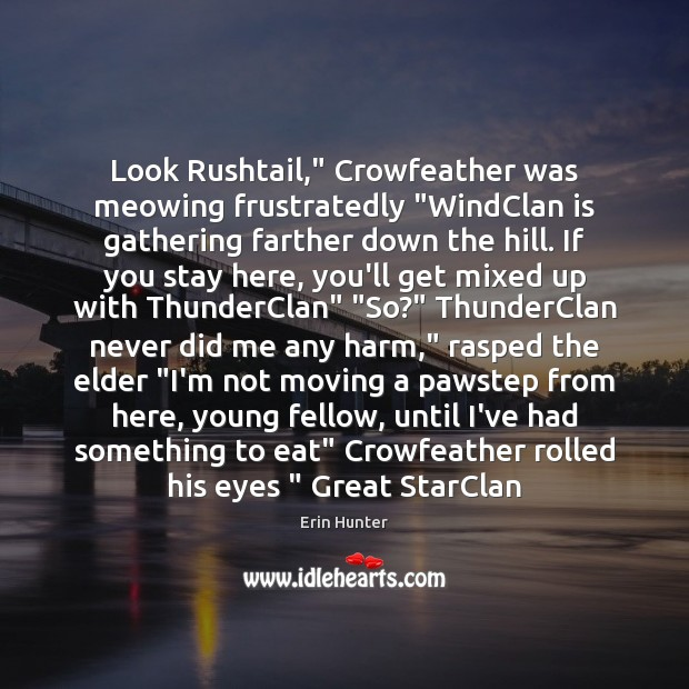 "Look Rushtail,"" Crowfeather was meowing frustratedly ""WindClan is gathering farther down the Erin Hunter Picture Quote"