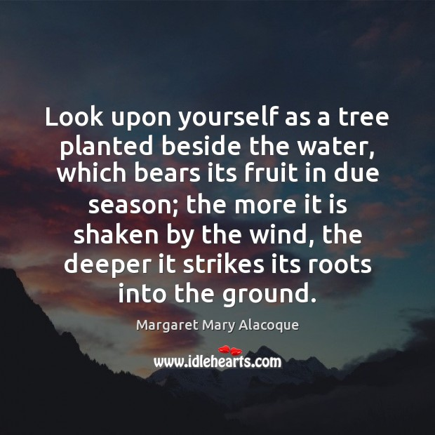 Look upon yourself as a tree planted beside the water, which bears Image