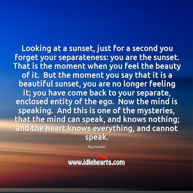 Looking at a sunset, just for a second you forget your separateness: Image