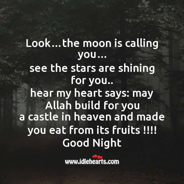 Image, Look…the moon is calling you…