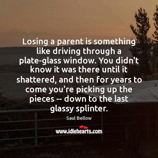 Losing a parent is something like driving through a plate-glass window. You Saul Bellow Picture Quote