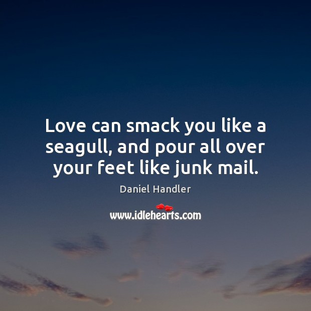 Image, Love can smack you like a seagull, and pour all over your feet like junk mail.