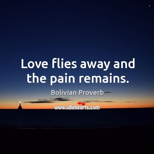 Love flies away and the pain remains. Bolivian Proverbs Image