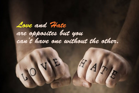 Love and Hate Coexist