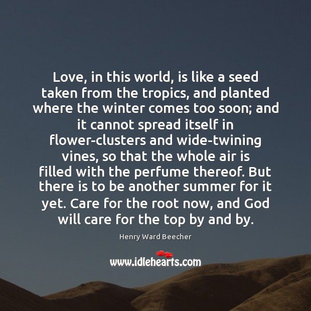 Love, in this world, is like a seed taken from the tropics, Image