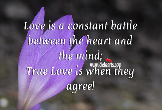True love is when the heart and the mind agree! Image