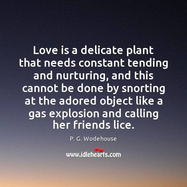 Love is a delicate plant that needs constant tending and nurturing, and P. G. Wodehouse Picture Quote