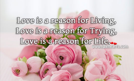 Love is a reason for living Image