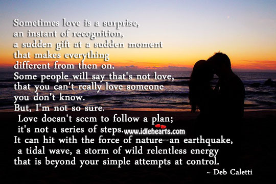 Sometimes love is a sudden gift. Plan Quotes Image