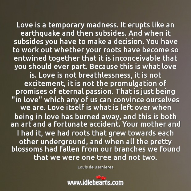 Image, Love is a temporary madness. It erupts like an earthquake and then subsides.