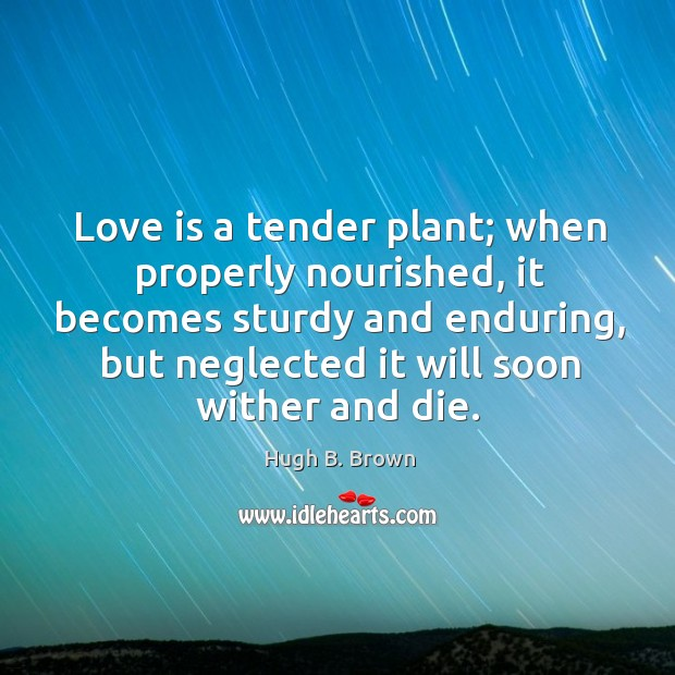 Love is a tender plant; when properly nourished, it becomes sturdy and Image