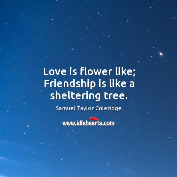 Love is flower like; friendship is like a sheltering tree. Image