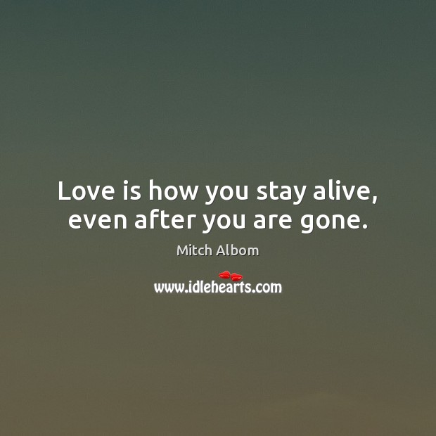 Love is how you stay alive, even after you are gone. Mitch Albom Picture Quote