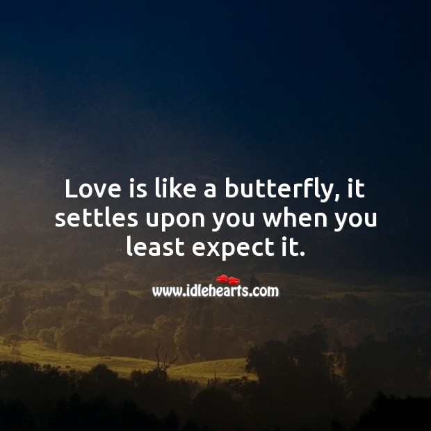 Love is like a butterfly, it settles upon you when you least expect it. Expect Quotes Image