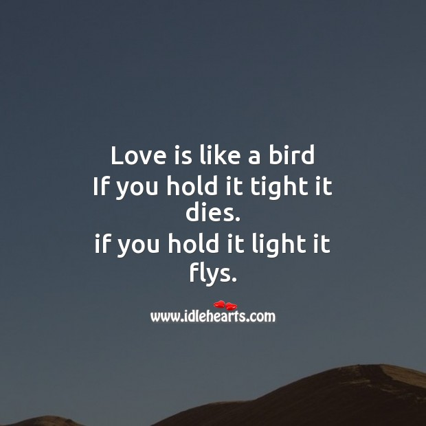 Love is like bird, it dies or flys, if you don't take care. Image