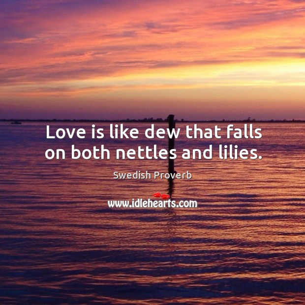 Love is like dew that falls on both nettles and lilies. Swedish Proverbs Image