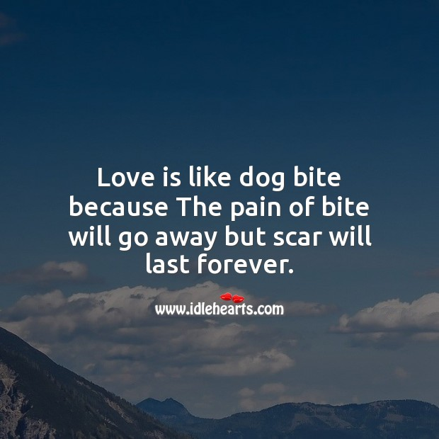 Love is like dog bite because the pain of bite will go away but scar will last forever. Image