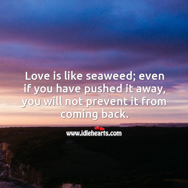 Love is like seaweed; even if you have pushed it away, you will not prevent it from coming back. Image