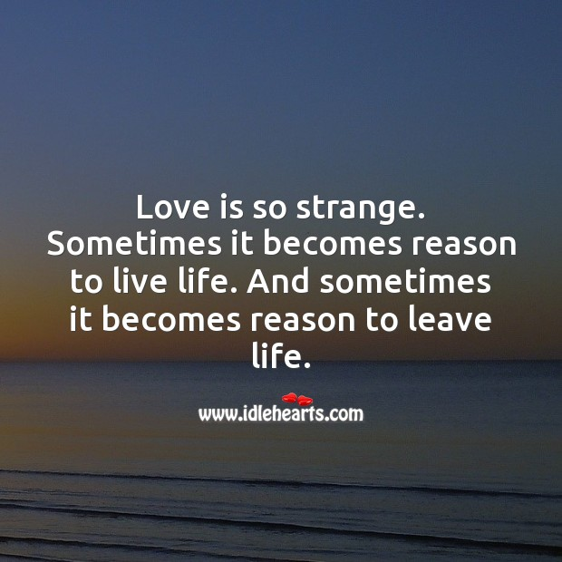 Image, Love is so strange.
