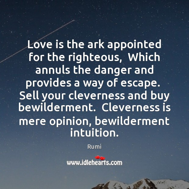 Image, Love is the ark appointed for the righteous,  Which annuls the danger