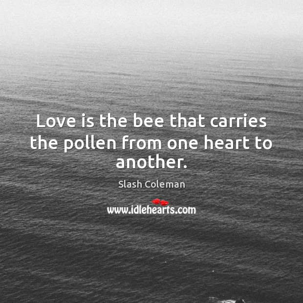 Love is the bee that carries the pollen from one heart to another. Image