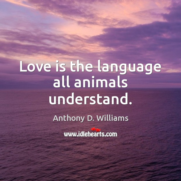 Image, Love is the language all animals understand.