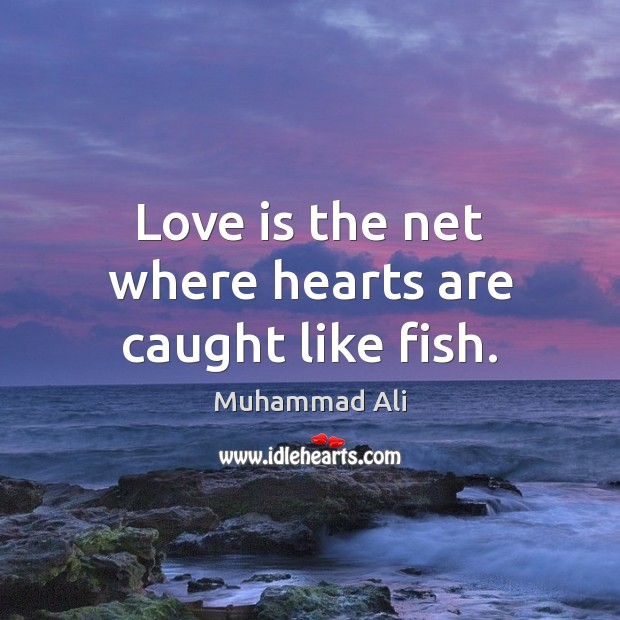 Love is the net where hearts are caught like fish. Muhammad Ali Picture Quote