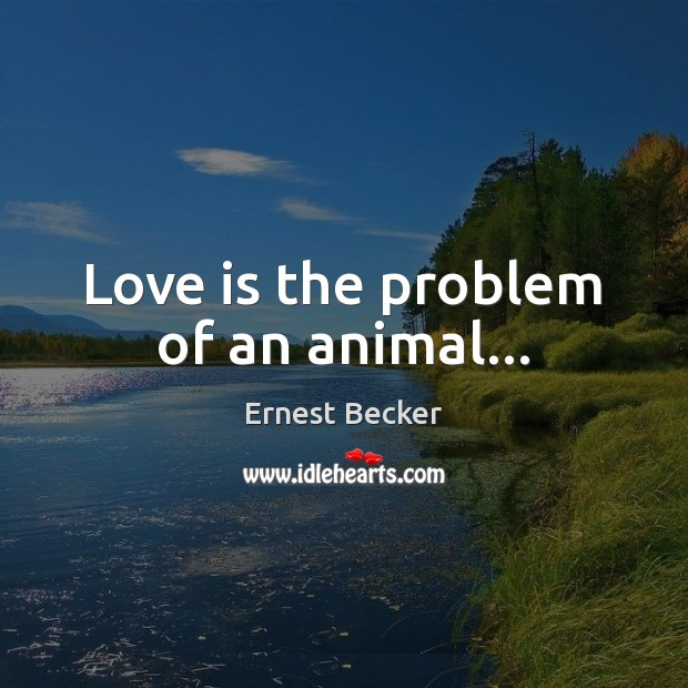 Love is the problem of an animal… Image