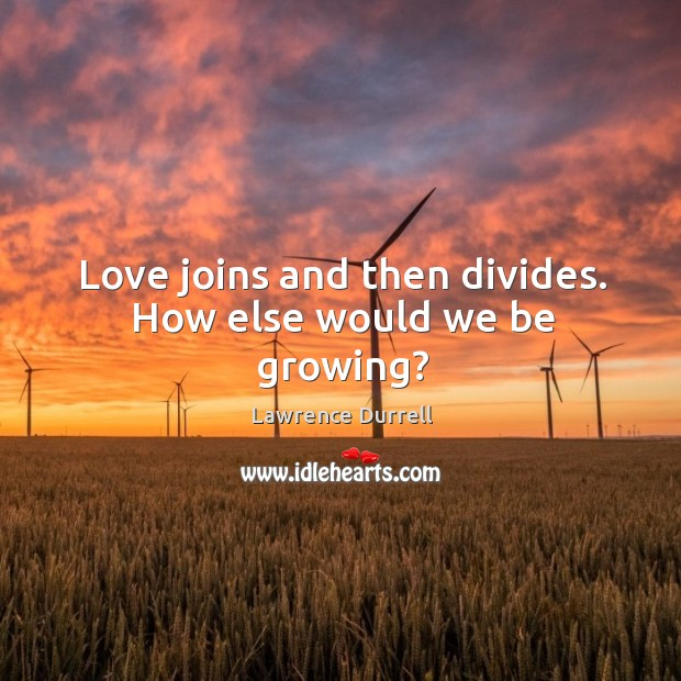 Love joins and then divides. How else would we be growing? Image