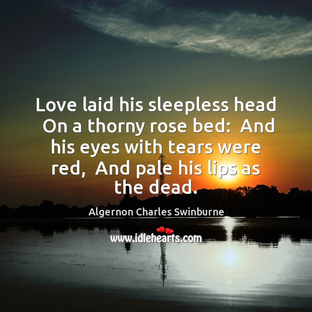 Love laid his sleepless head  On a thorny rose bed:  And his Algernon Charles Swinburne Picture Quote