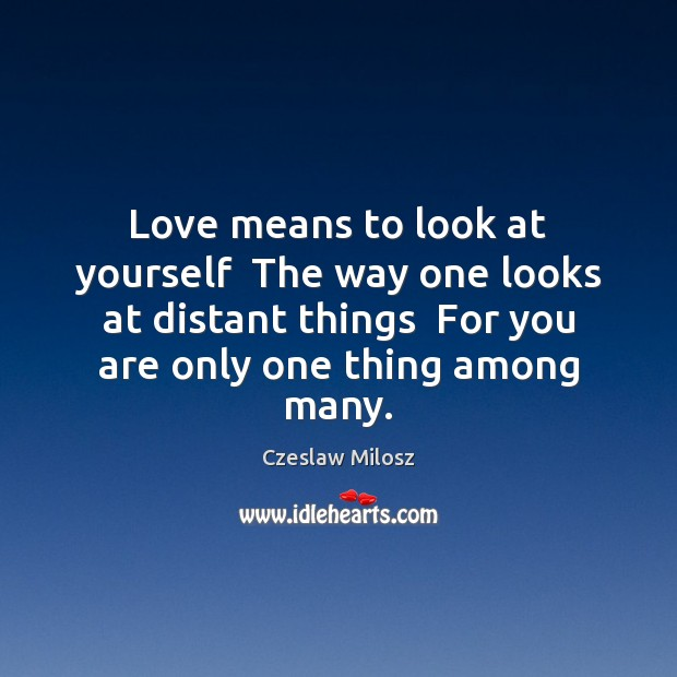 Love means to look at yourself  The way one looks at distant Czeslaw Milosz Picture Quote