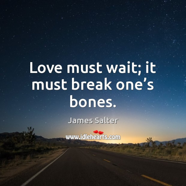 Love must wait; it must break one's bones. James Salter Picture Quote