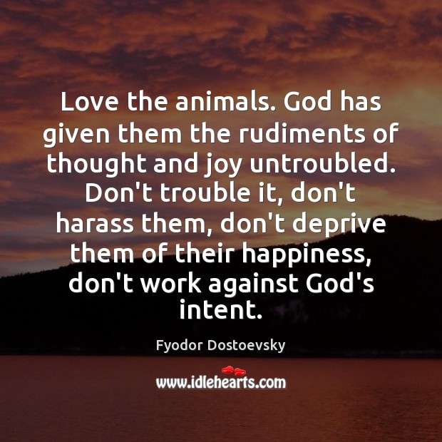 Image, Love the animals. God has given them the rudiments of thought and
