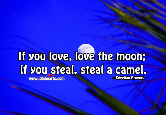 If you love, love the moon; if you steal, steal a camel. Egyptian Proverbs Image